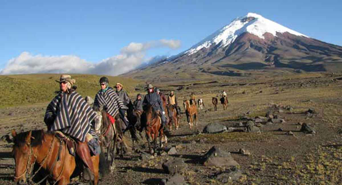 Aventura en los Andes: Tren Crucero