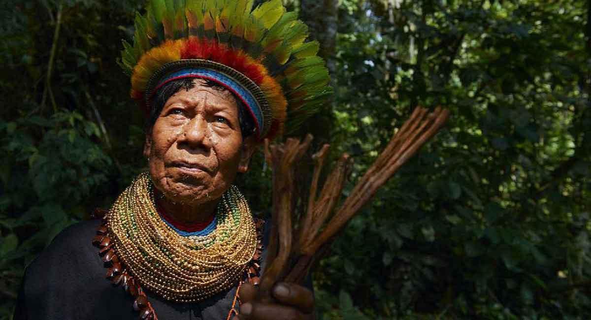 Tour Amazonia Multicolor en Ecuador